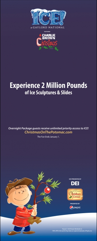 Experience 2 Million Pounds of Ice Sculptures & Slides