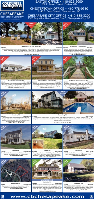 Chesapeake Real Estate Company