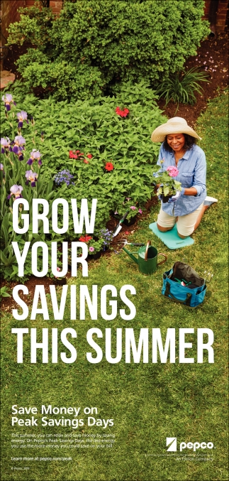 Grow Your Saving this Summer