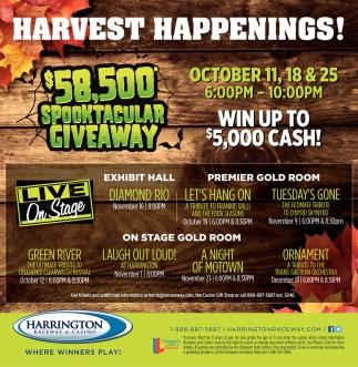 Harvest Happenings!