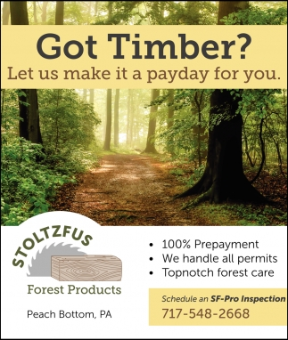 Got Timber?