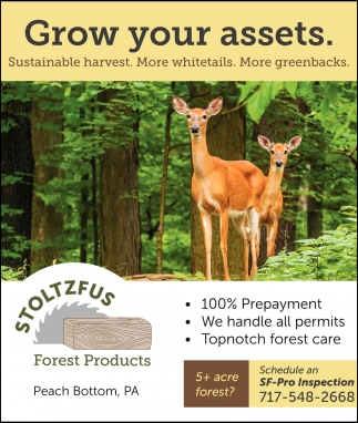 Grow Your Assets