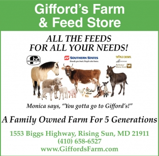 All The Feeds For All Your Needs!