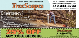25% OFF Any Tree Service