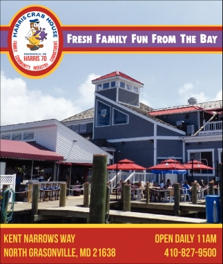 Fresh Family Fun From the Bay