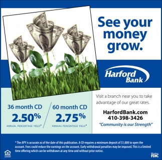 See Your Money Grow