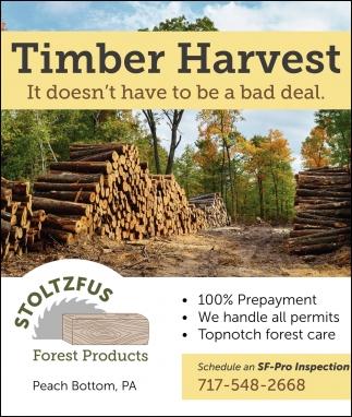 Timber Harvest